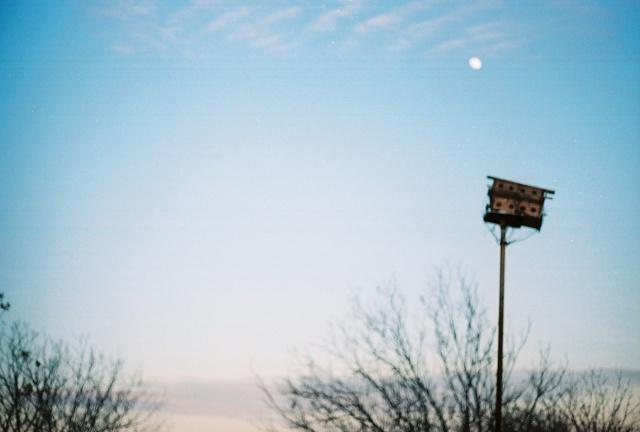 birdhouse and sky