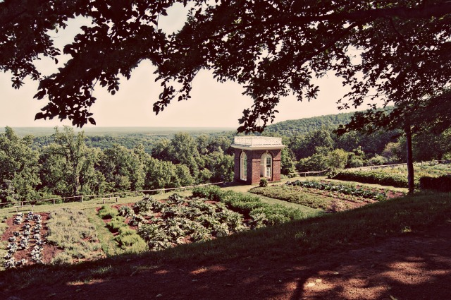 Vegetable garden at Monticello