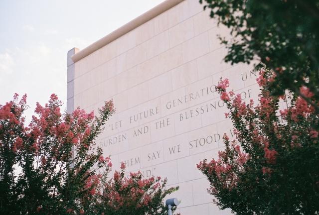 George Bush Library crepe myrtles