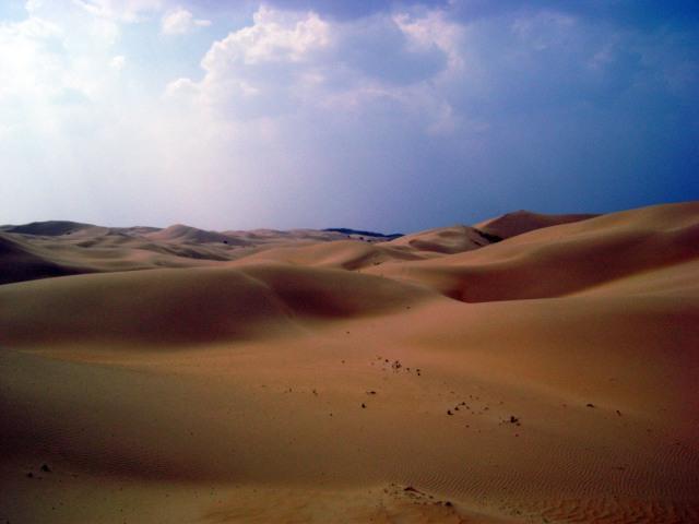 Desert_summer