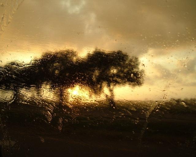 Katy_rainPhoto