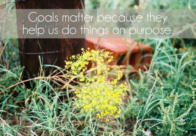 goals help us do things on purpose